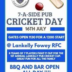 Lankelly Fowey 7-A-Side Pub Cricket