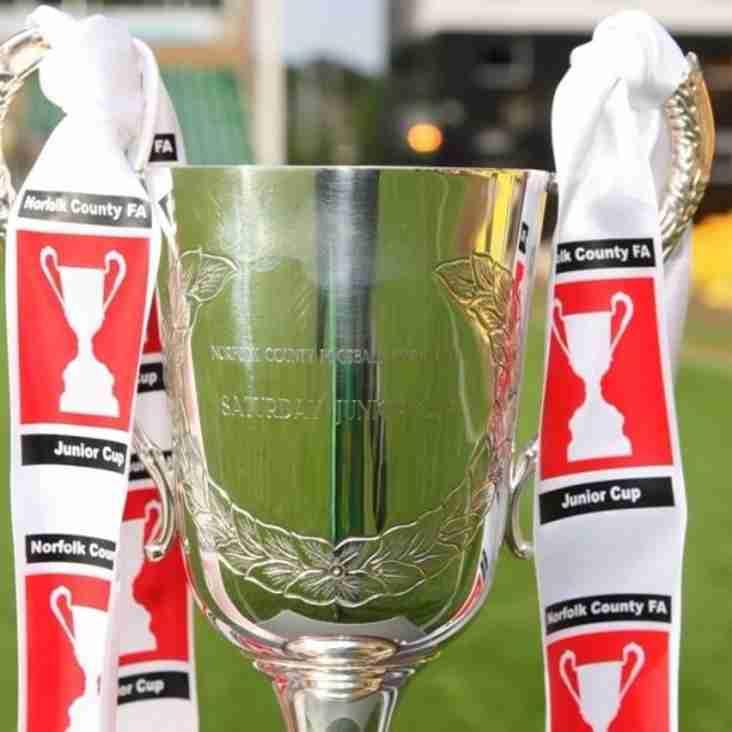 Reserves to host Runton under the lights in Norfolk FA Junior Cup