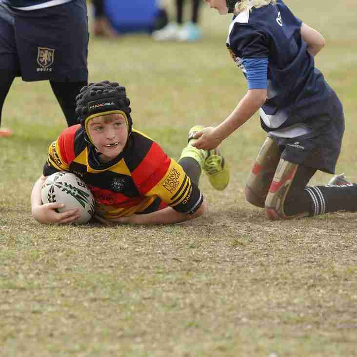 Southport Rugby Festival