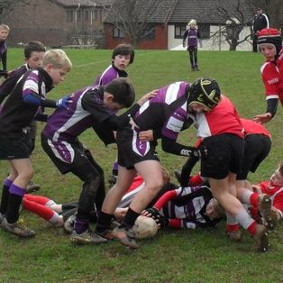 Exmouth under 11's lose a close encounter with the Exeter Saracens
