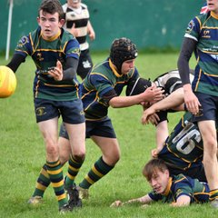 KESWICK COLTS 31 V 15 HOUGHTON COLTS