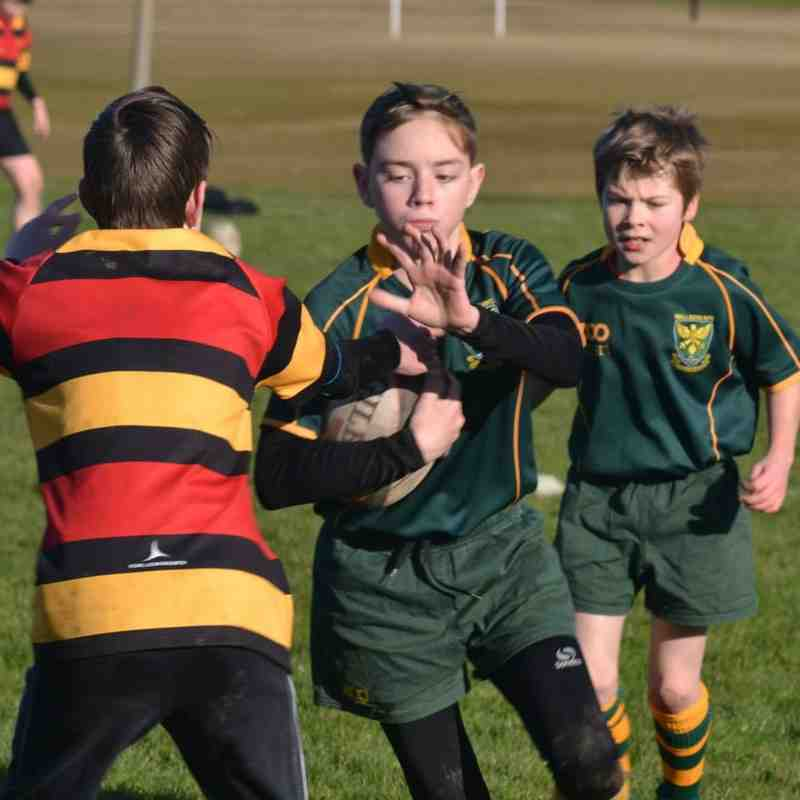 Wallsend RFC Juniors