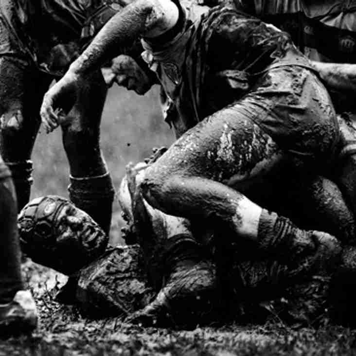 Ruck, Maul, Scrum, Repeat......................
