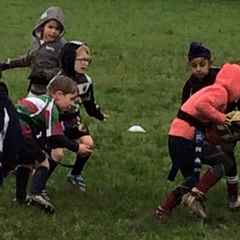 Mighty Sevens Rise from the Mud Again!