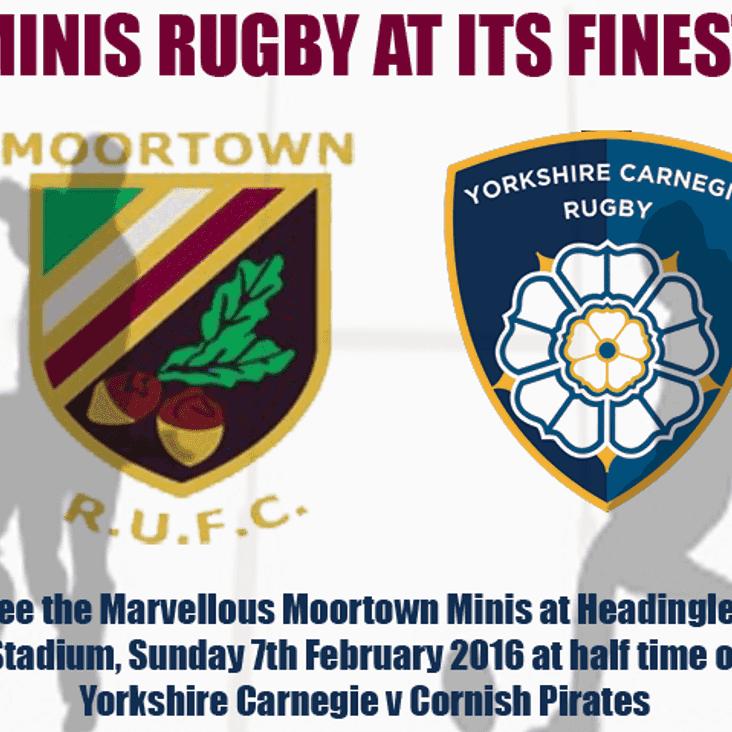 Moortown Minis at Headingley