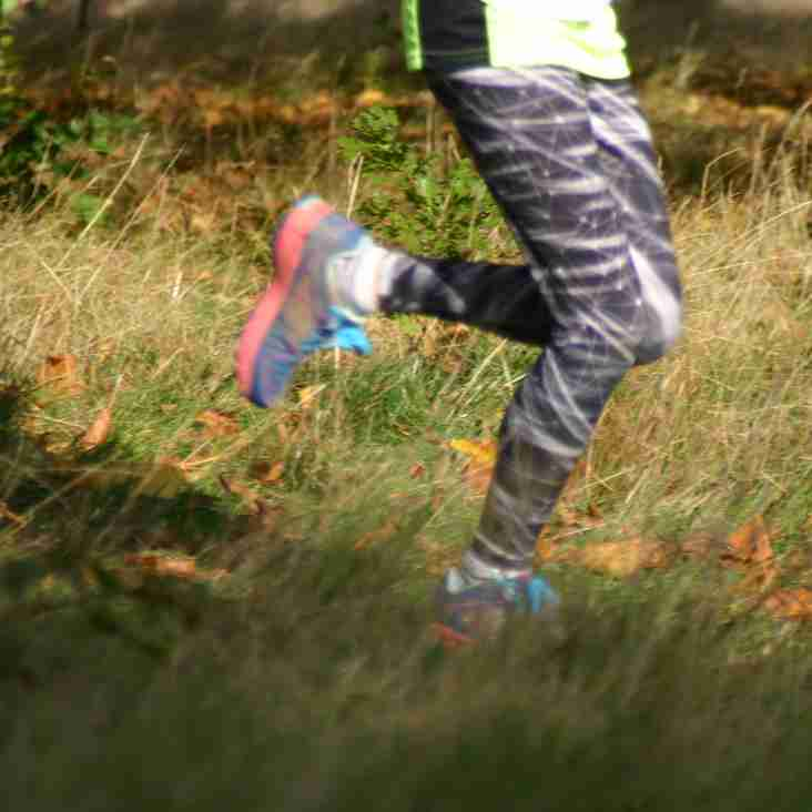 Results from Yorkshire Cross Country Championships