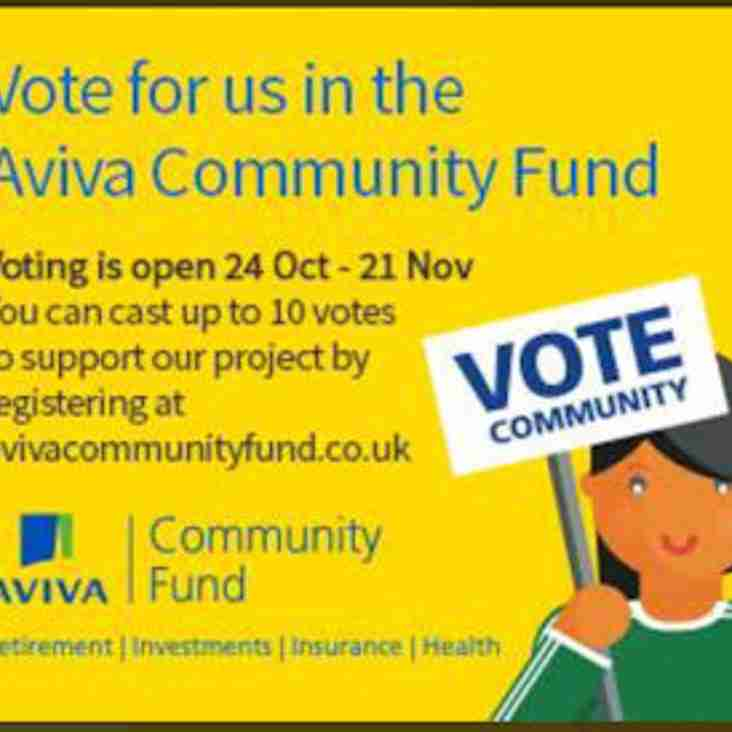 Please vote for us - Aviva Community Fund - Development of Junior Cricket