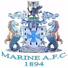 The Gingerbreads head to Marine