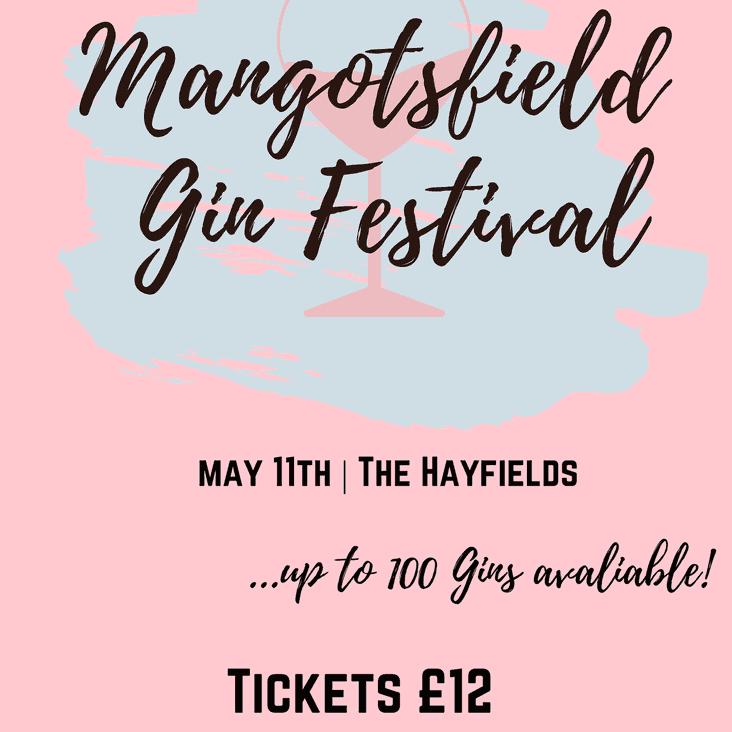 Mangotsfield Gin Festival