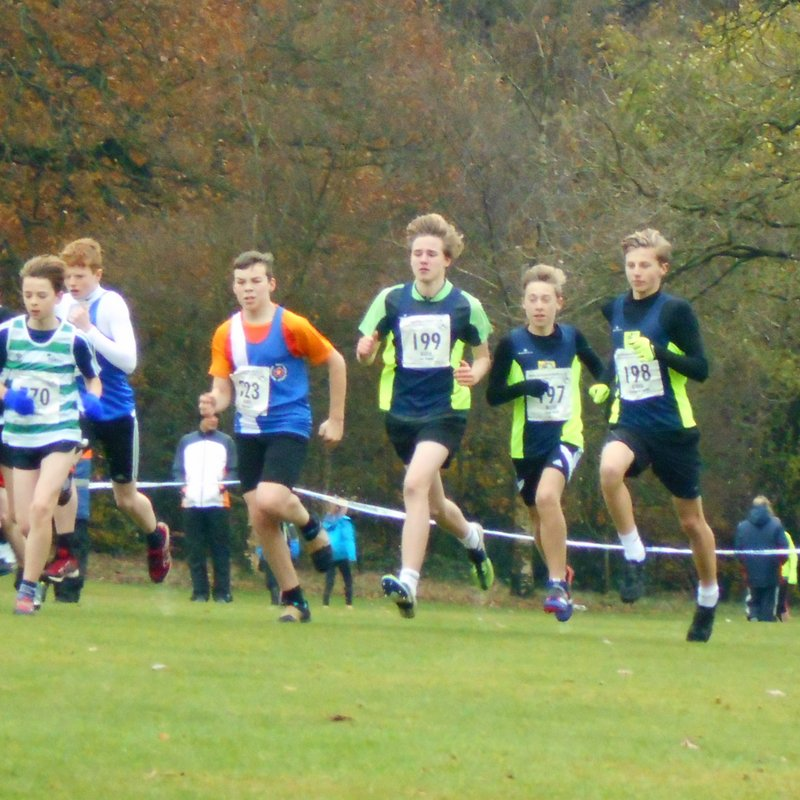 West Midlands Young Athletes Cross Country League at Aldersley, Wolverhampton