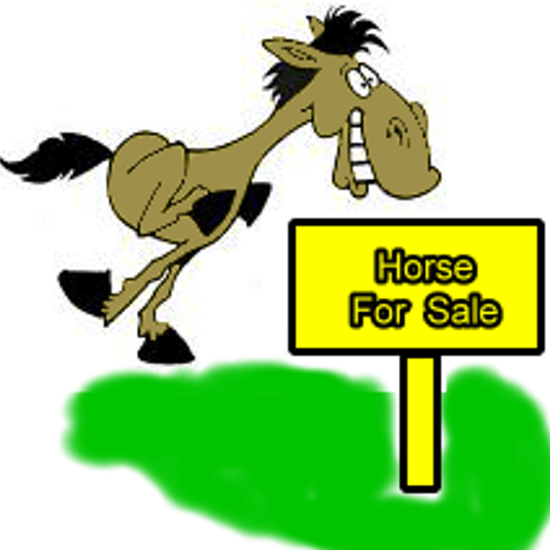 Fundraising Race Night Saturday 2nd February