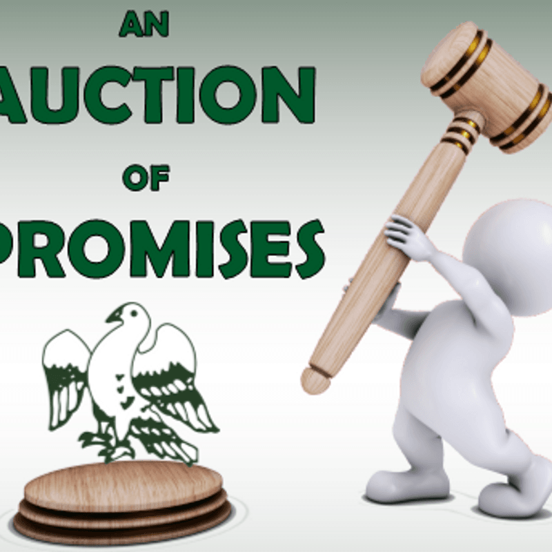 Auction of Promises 2017