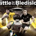 Rugby WA Bledisloe Cup Corporate Packages