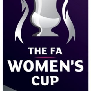 Millwall Lionesses 3  Lowestoft Ladies 0