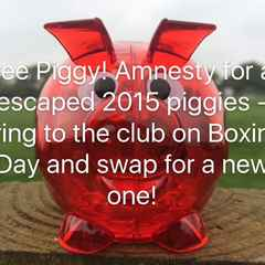 Piggy Amnesty 2015 at Boxing Day Fun Day!