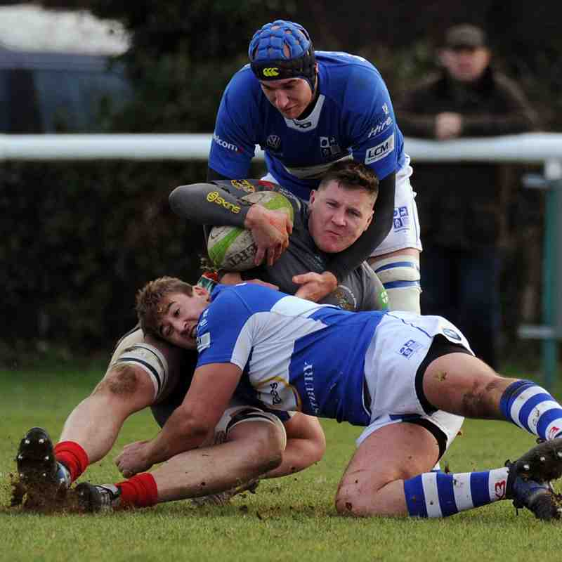 Vs Plymouth Albion (H) Feb 2019