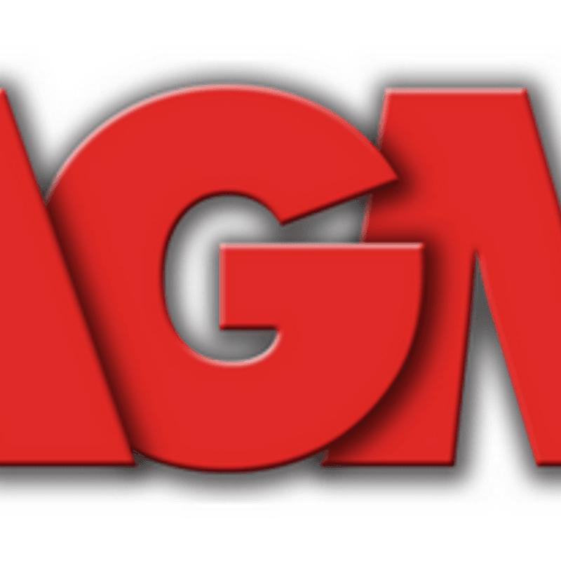 YHC AGM 2017