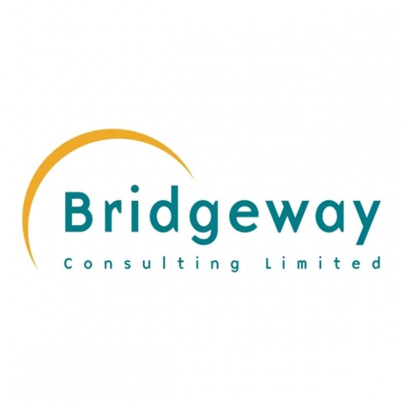 New sponsorship with Bridgeway Consulting