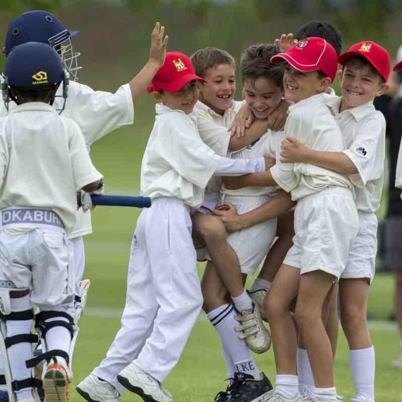 Junior Cricket Programme