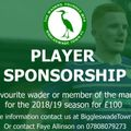 Player Sponsorship Details