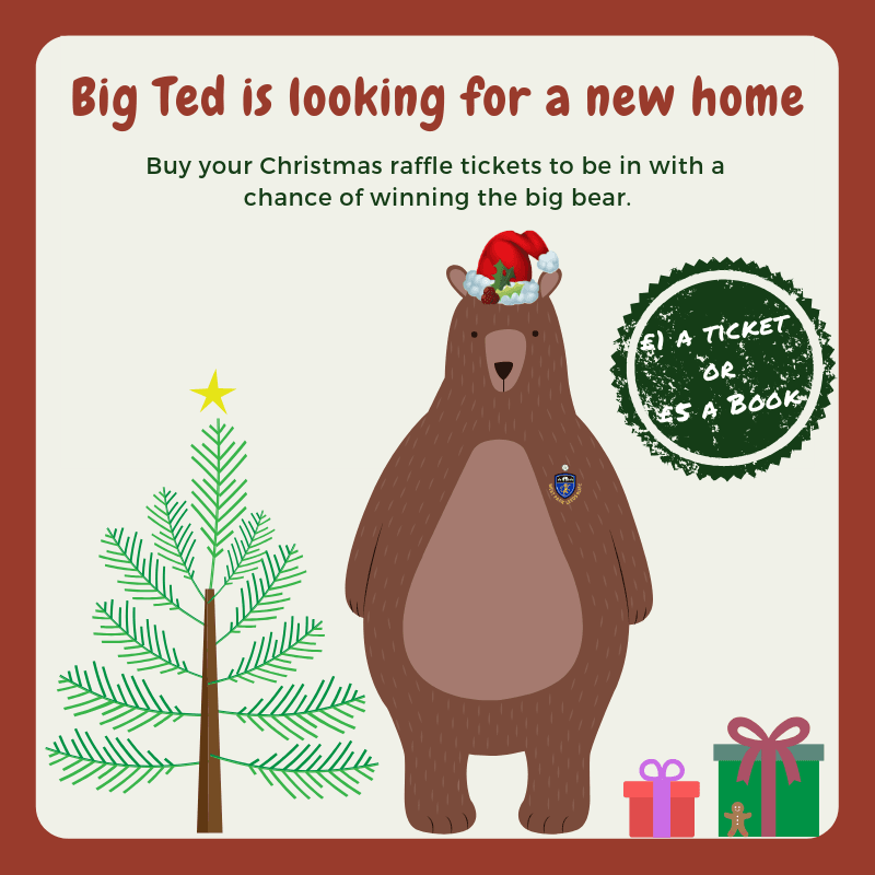 Big Ted needs a loving home