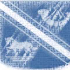 Yarnbury 1st XV v Scarborough 1st XV
