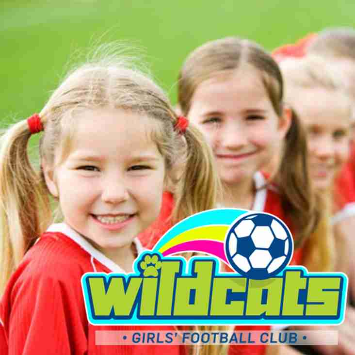 WILDCATS Return to Leighton United!