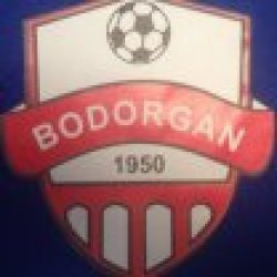 Bodorgan Juniors