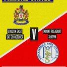 Marske United 1-0 Stocksbridge Park Steels - Match Report