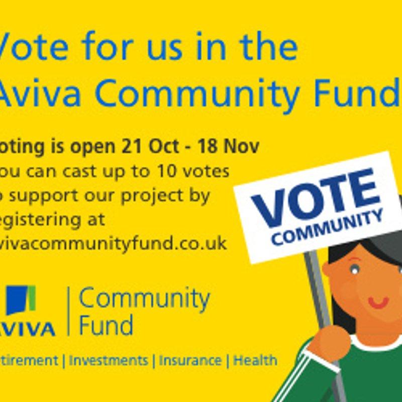 Club Applies for Aviva Community Fund