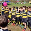 U10 Kent Mini Rugby Festival 2019
