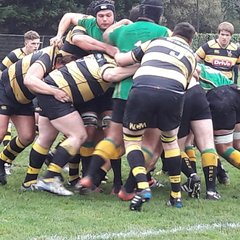 Hornets (Away) 29th Oct 2016