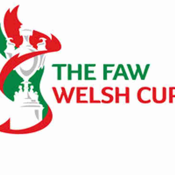 Llandudno beat Briton Ferry to progress in the JD Welsh Cup