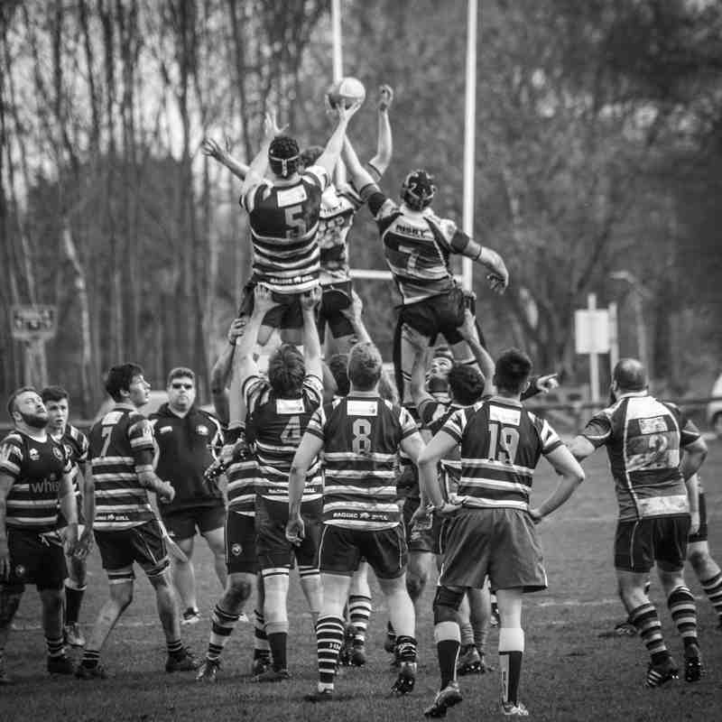Marlow RFC 2XV vs High Wycombe | 11 March 2017
