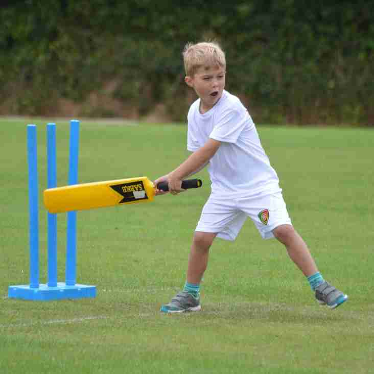 Kwik Cricket Festivals 2017