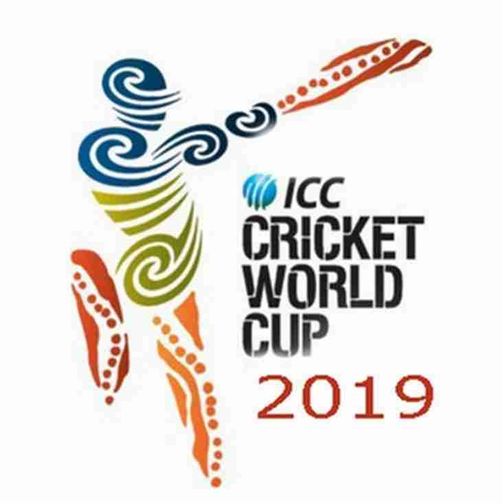 Ipplepen is an official 'Cricket World Cup' Club