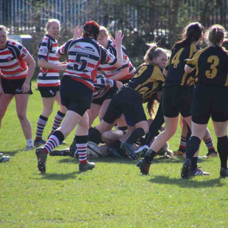 ladies v Windermere