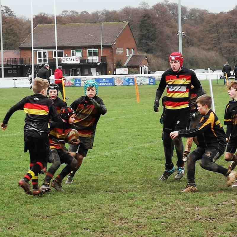Hampshire Tournament 2019
