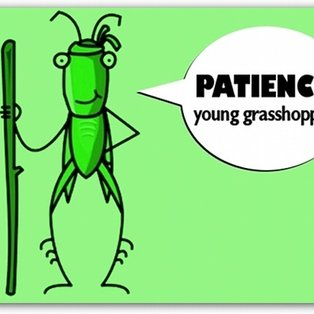 Patience young grasshopper