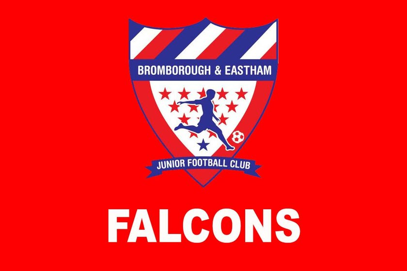Falcons (Under 8's) beat Higher beb 11 - 6