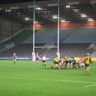 Wasps beaten by Harlequins in fierce contest at The Stoop