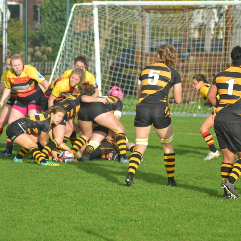 Wasps run rampant against Richmond to remain undefeated