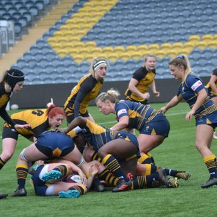 Wasps put seven past Worcester to keep ahead in playoff fight