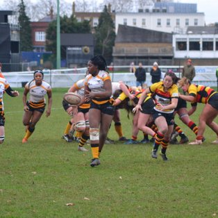 Wasps back top of development league with win over Richmond