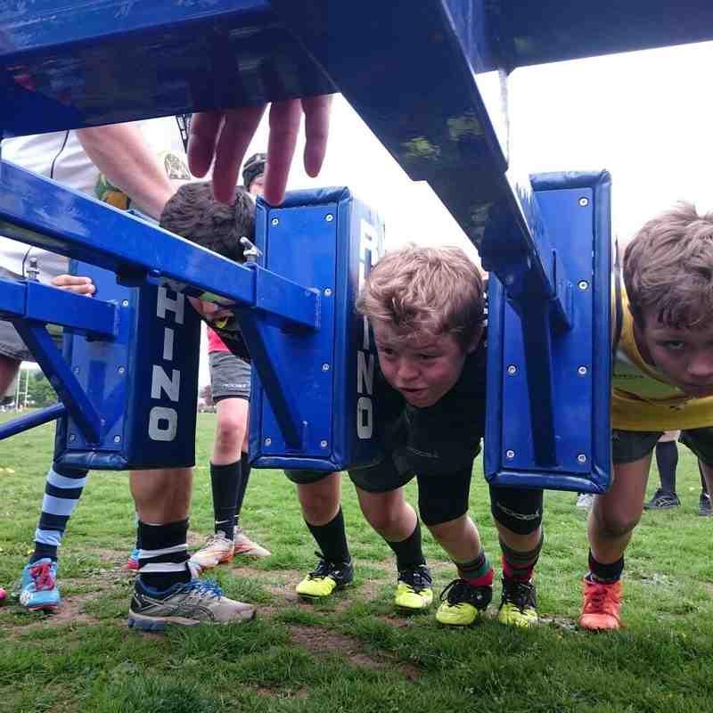 Under 11 Training 2015