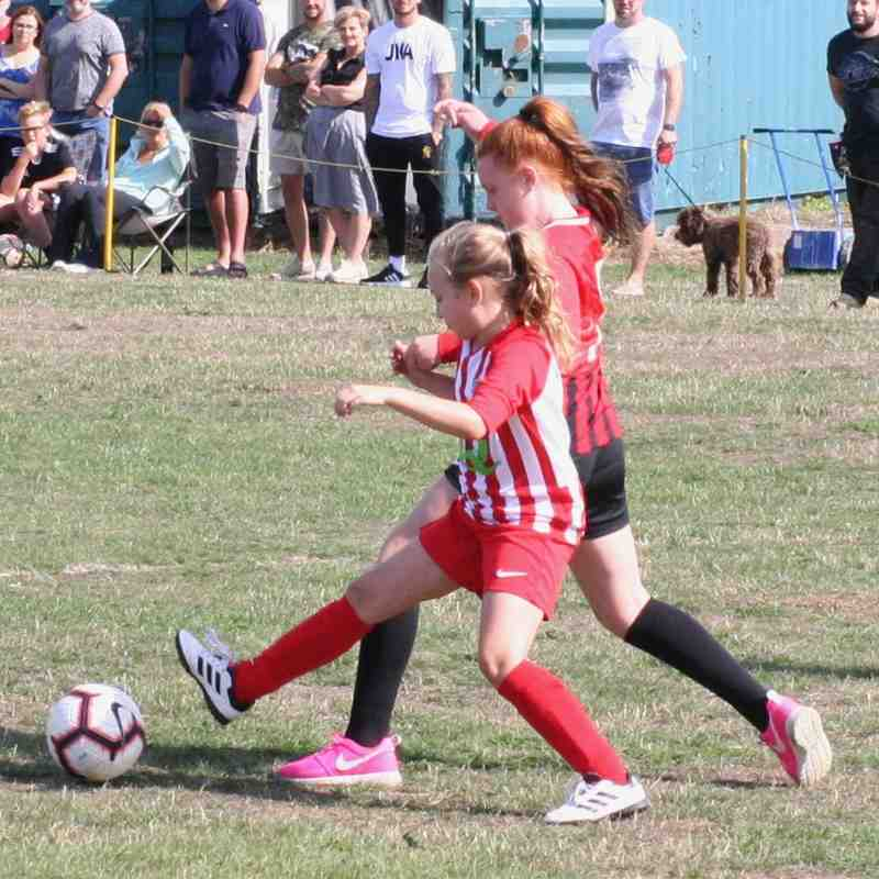 Afc Pogmoor U10 Girls 2018