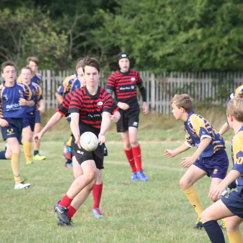 U14 Crusaders v Teddington (away) 38-0 - 20160925