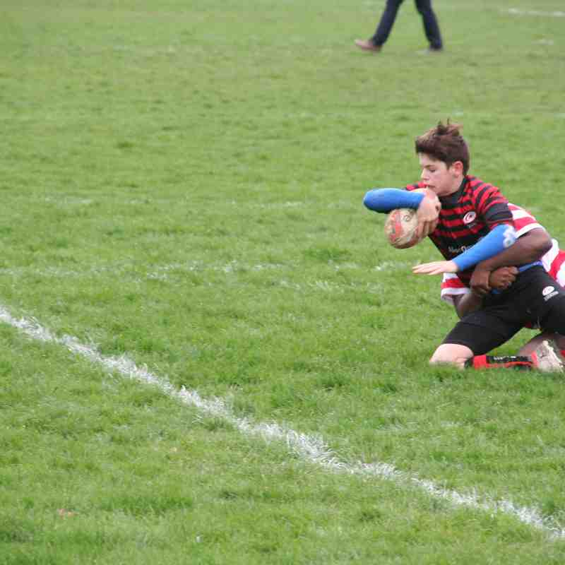 U14 Crusaders/Infidels v Finchley (home) 34:12 - 20170319
