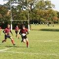 Saracens U15 Crusaders v. Rosslyn Park