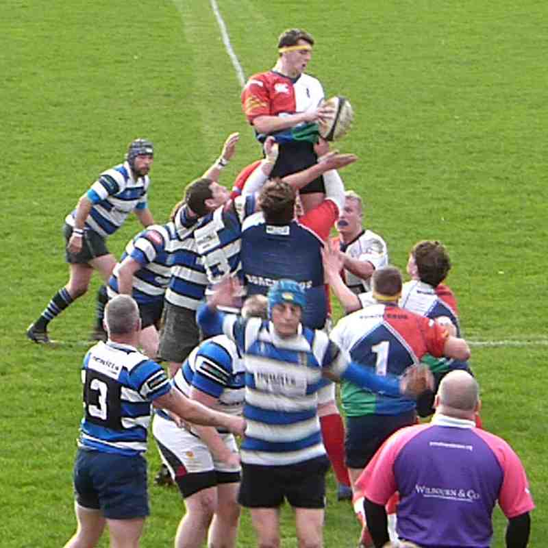Buccaneers 22 Driffield Cents 5